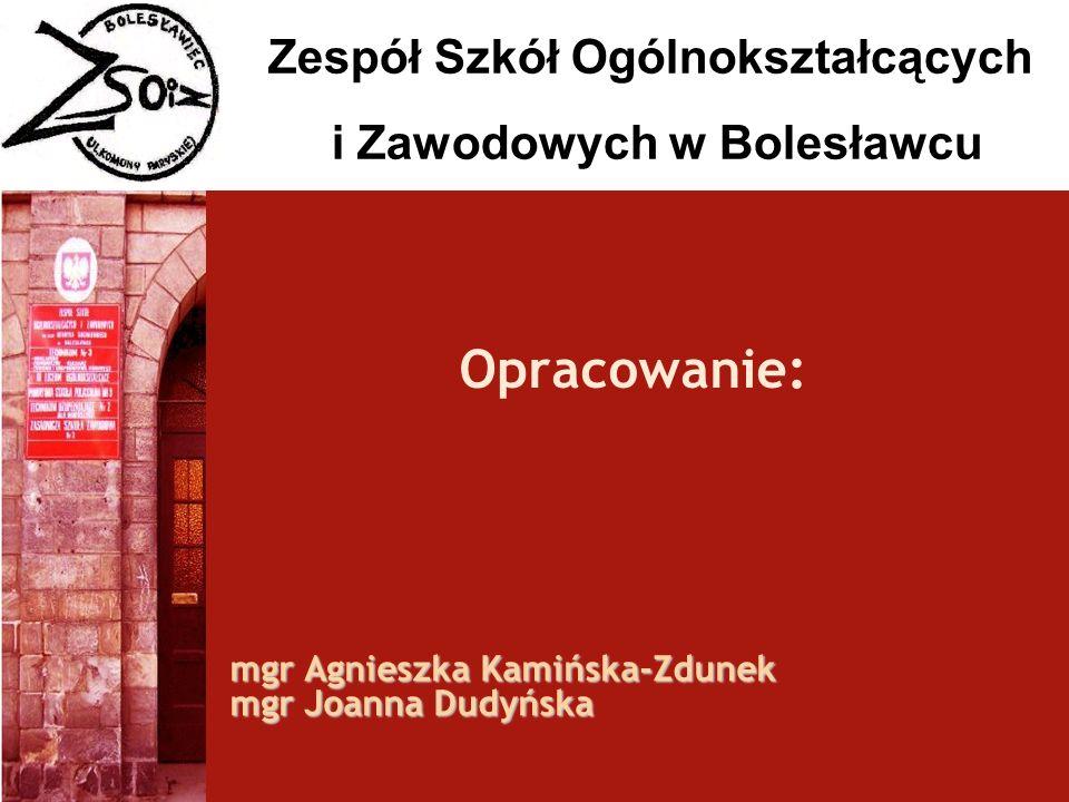 Zespół Szkół Ogólnokształcących i Zawodowych w Bolesławcu Opracowanie: mgr Agnieszka Kamińska-Zdunek mgr Joanna Dudyńska