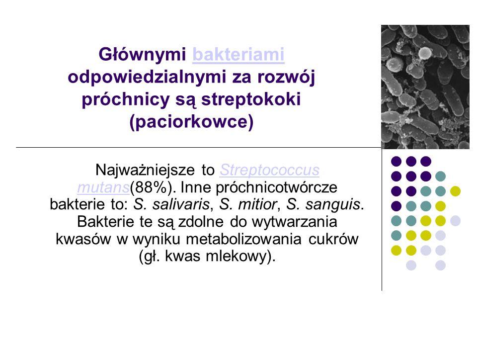 Głównymi bakteriami odpowiedzialnymi za rozwój próchnicy są streptokoki (paciorkowce)bakteriami Najważniejsze to Streptococcus mutans(88%). Inne próch