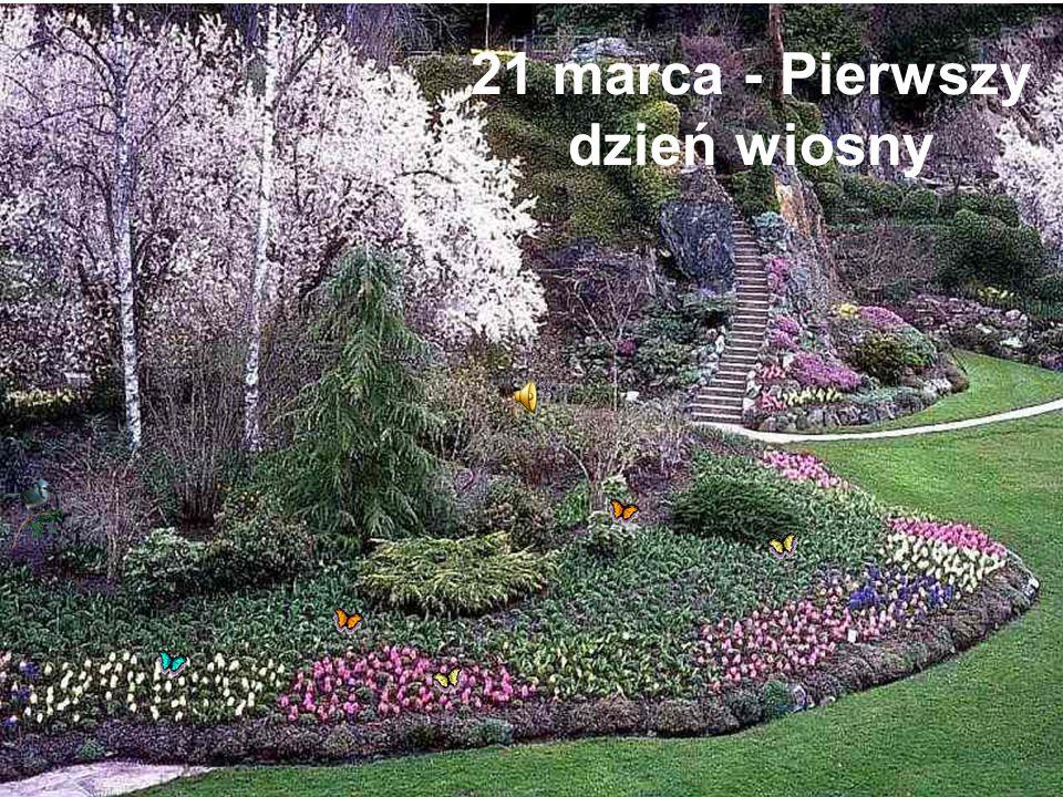 21 marca - Pierwszy dzień wiosny