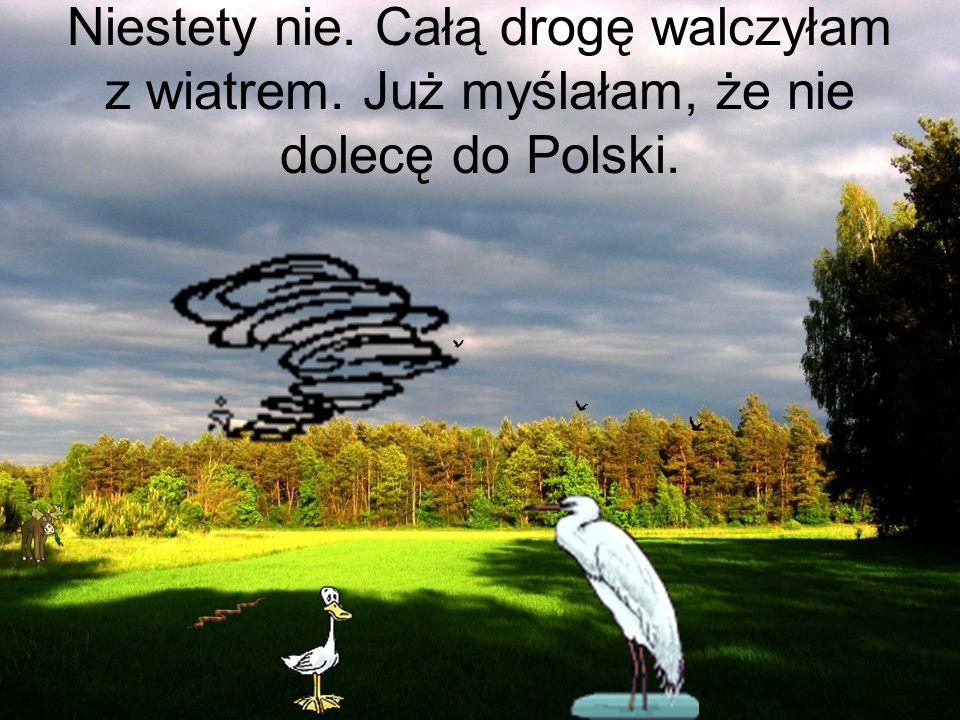 Niestety nie. Całą drogę walczyłam z wiatrem. Już myślałam, że nie dolecę do Polski.