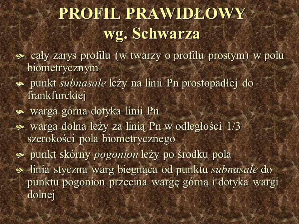 PROFIL PRAWIDŁOWY wg. Schwarza cały zarys profilu (w twarzy o profilu prostym) w polu biometrycznym cały zarys profilu (w twarzy o profilu prostym) w