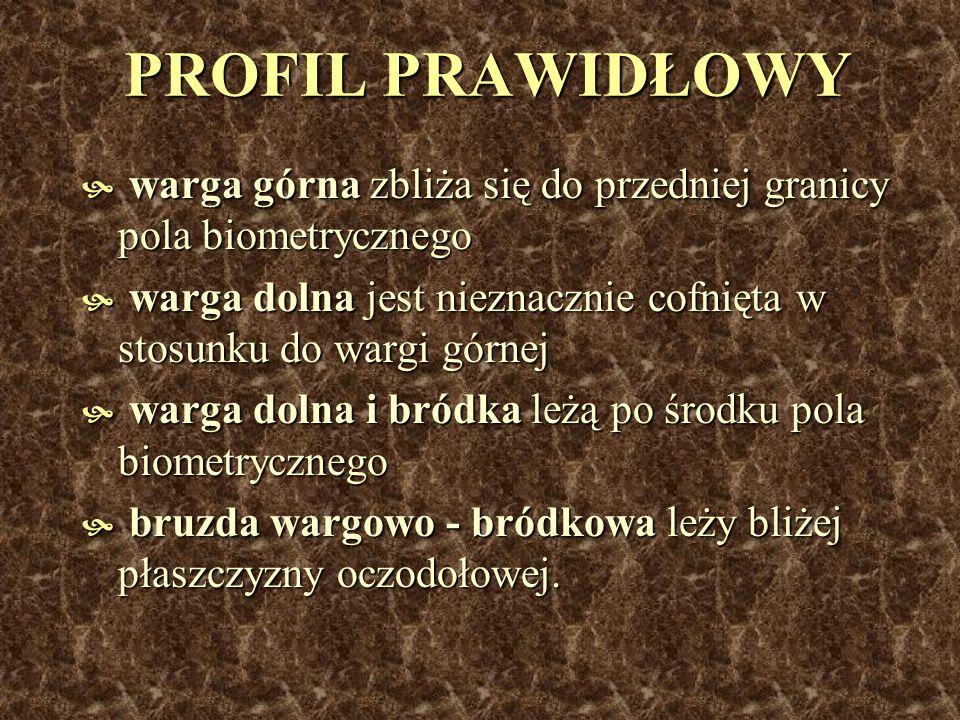 ANALIZA PROFILU wg.