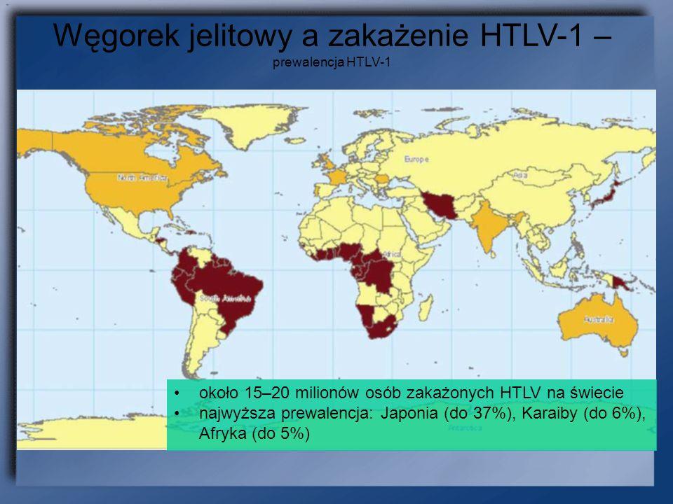 brązowy: 1 - 5% ciemno-żółty: poniżej 1% Węgorek jelitowy a zakażenie HTLV-1 – prewalencja HTLV-1 około 15–20 milionów osób zakażonych HTLV na świecie