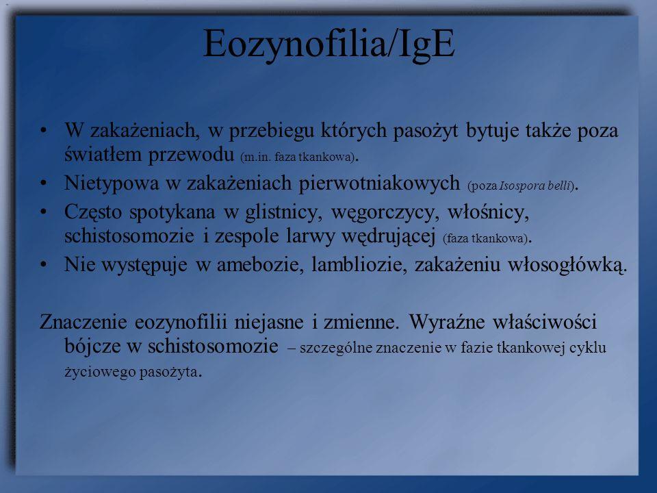 Eozynofilia/IgE W zakażeniach, w przebiegu których pasożyt bytuje także poza światłem przewodu (m.in. faza tkankowa). Nietypowa w zakażeniach pierwotn