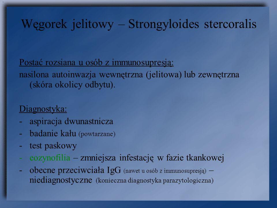 Postać rozsiana u osób z immunosupresją: nasilona autoinwazja wewnętrzna (jelitowa) lub zewnętrzna (skóra okolicy odbytu). Diagnostyka: -aspiracja dwu