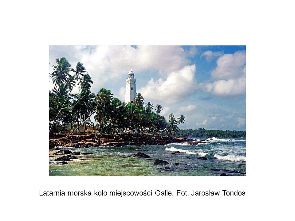 Sri Lanka - Łza Indii