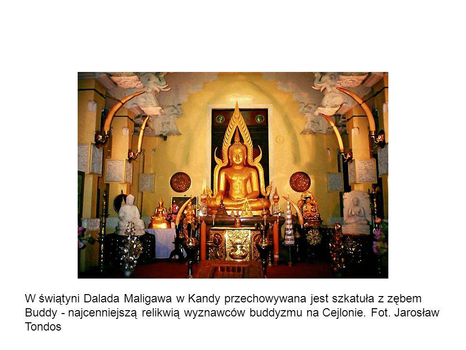 W świątyni Dalada Maligawa w Kandy przechowywana jest szkatuła z zębem Buddy - najcenniejszą relikwią wyznawców buddyzmu na Cejlonie.