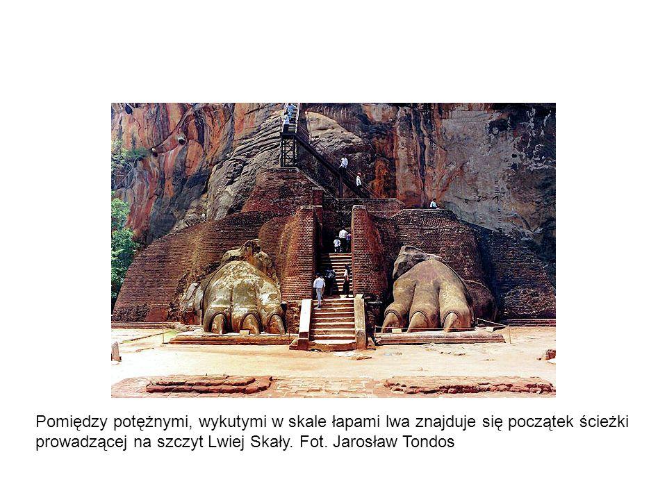 Pomiędzy potężnymi, wykutymi w skale łapami lwa znajduje się początek ścieżki prowadzącej na szczyt Lwiej Skały.