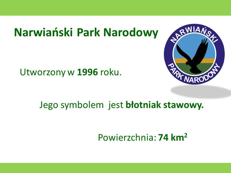 Magurski Park Narodowy Utworzony w 1995 roku. Jego symbolem jest orlik krzykliwy. Powierzchnia: 194,39 km 2