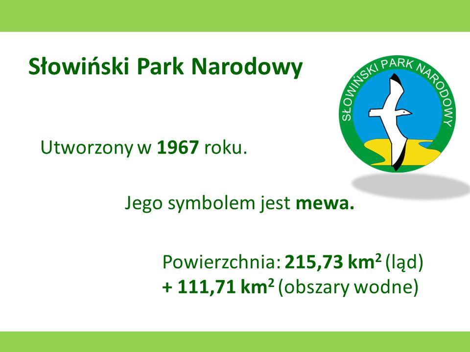 Roztoczański Park Narodowy Utworzony w 1974 roku. Jego symbolem jest konik polski. Powierzchnia: 84,83 km 2