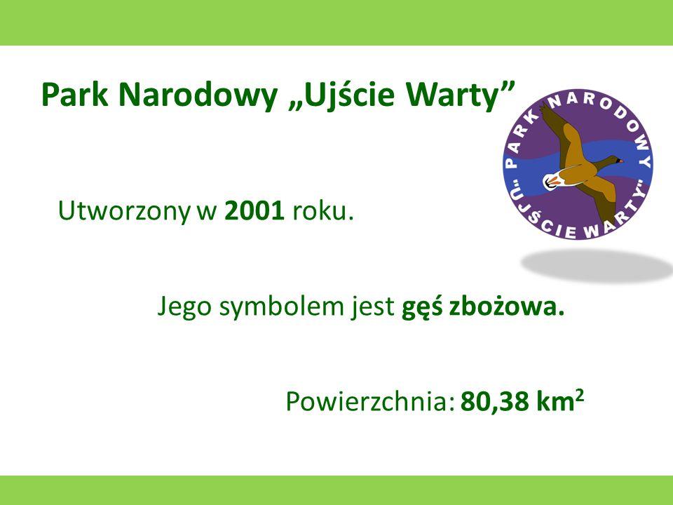 Tatrzański Park Narodowy Utworzony w 1954 roku. Jego symbolem jest kozica. Powierzchnia: 211,64 km 2