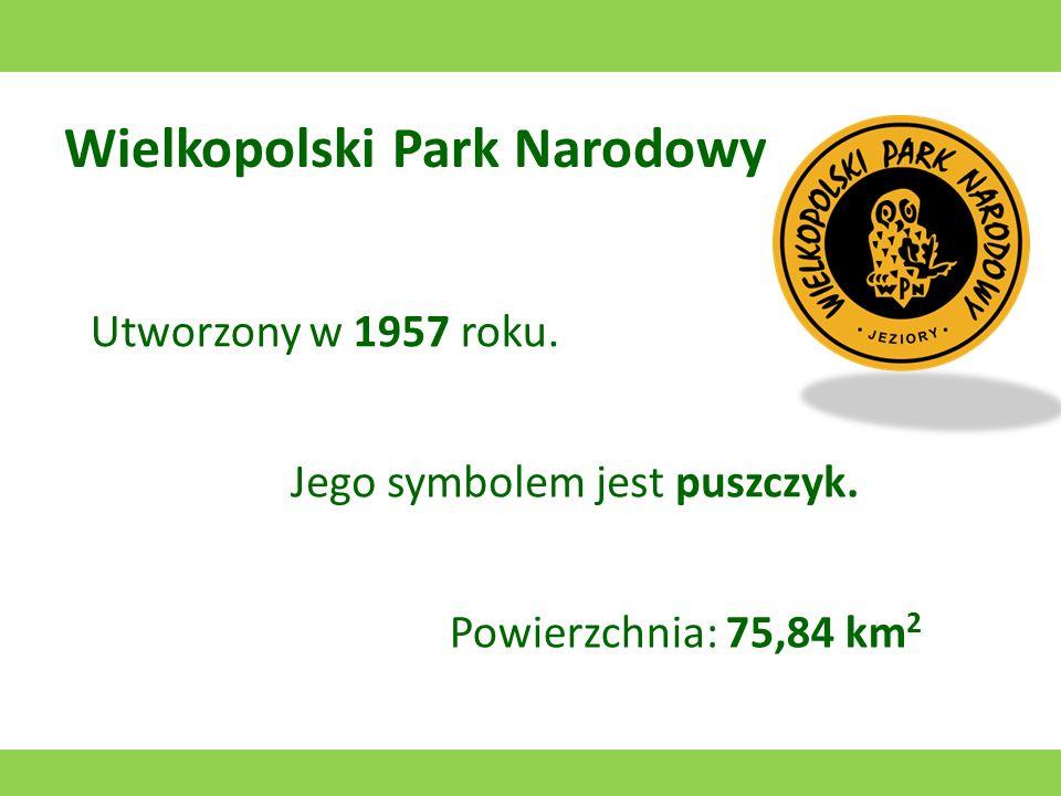 Park Narodowy Ujście Warty Utworzony w 2001 roku. Jego symbolem jest gęś zbożowa. Powierzchnia: 80,38 km 2