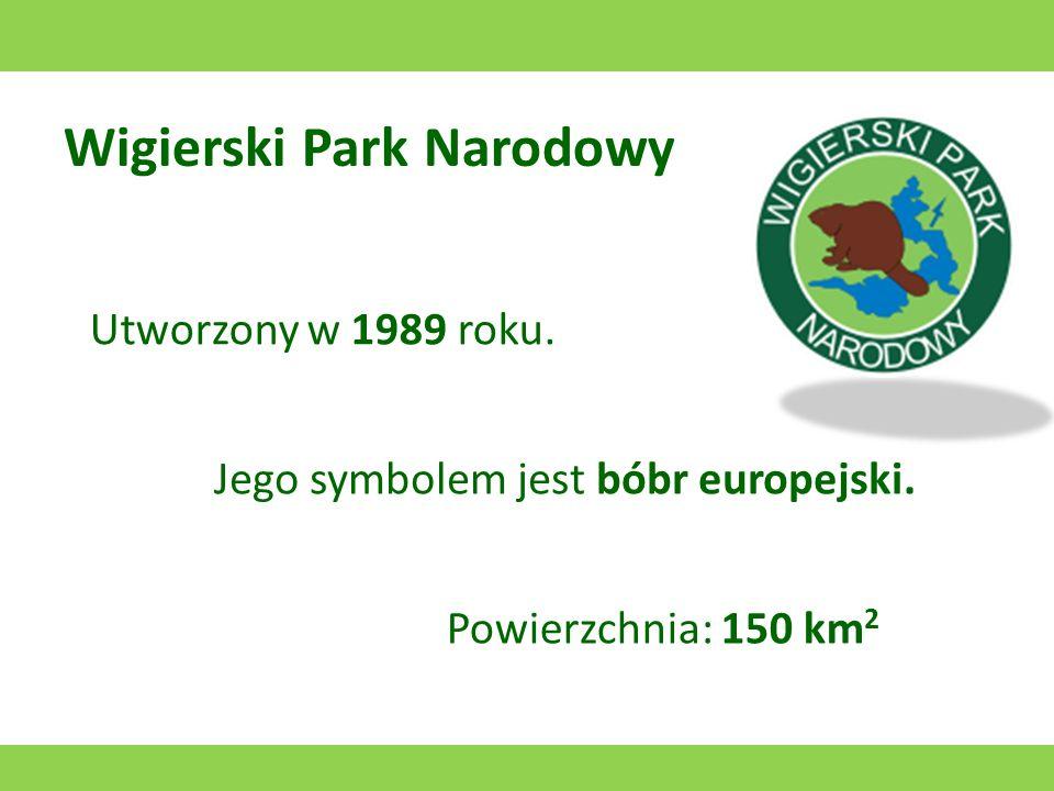 Wielkopolski Park Narodowy Utworzony w 1957 roku. Jego symbolem jest puszczyk. Powierzchnia: 75,84 km 2