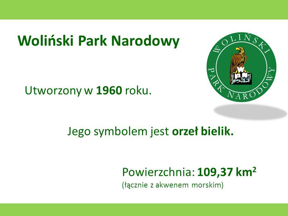 Wigierski Park Narodowy Utworzony w 1989 roku. Jego symbolem jest bóbr europejski. Powierzchnia: 150 km 2