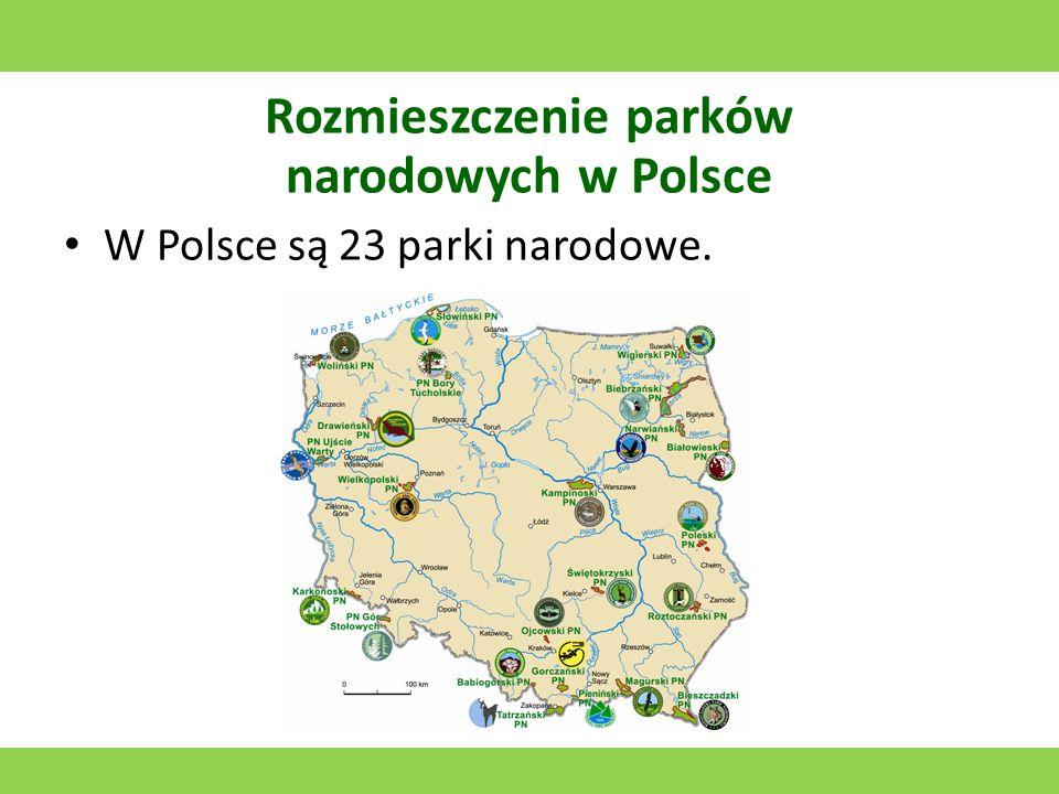 Karkonoski Park Narodowy Utworzony w 1959 roku.Jego symbolem jest Chojnik.