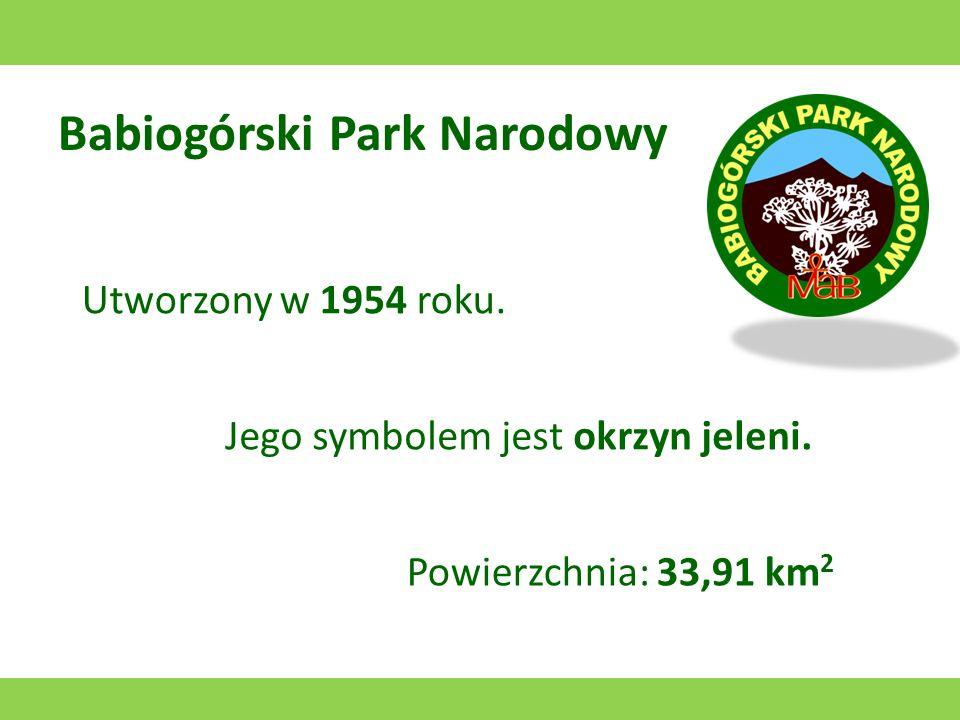 Babiogórski Park Narodowy Utworzony w 1954 roku.Jego symbolem jest okrzyn jeleni.