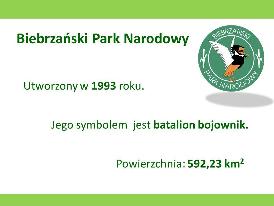 Biebrzański Park Narodowy Utworzony w 1993 roku.Jego symbolem jest batalion bojownik.