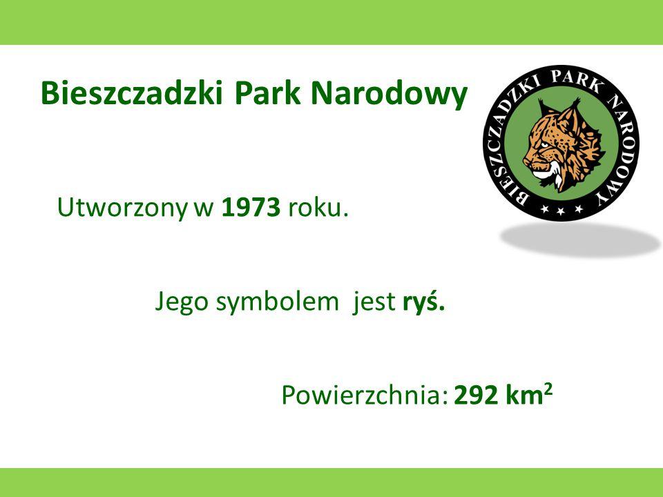 Bieszczadzki Park Narodowy Utworzony w 1973 roku. Jego symbolem jest ryś. Powierzchnia: 292 km 2