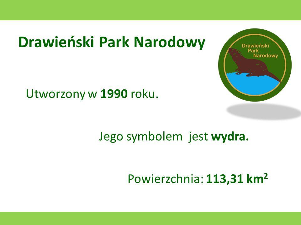 Drawieński Park Narodowy Utworzony w 1990 roku. Jego symbolem jest wydra. Powierzchnia: 113,31 km 2