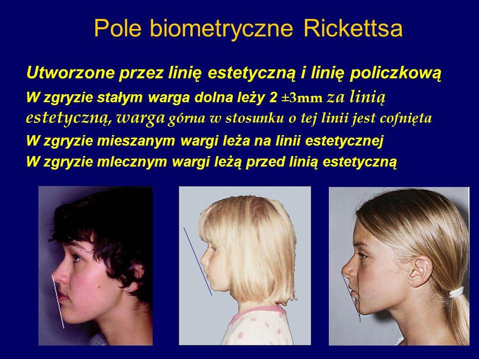 Pole biometryczne Rickettsa Utworzone przez linię estetyczną i linię policzkową W zgryzie stałym warga dolna leży 2 ± 3mm za linią estetyczną, warga g