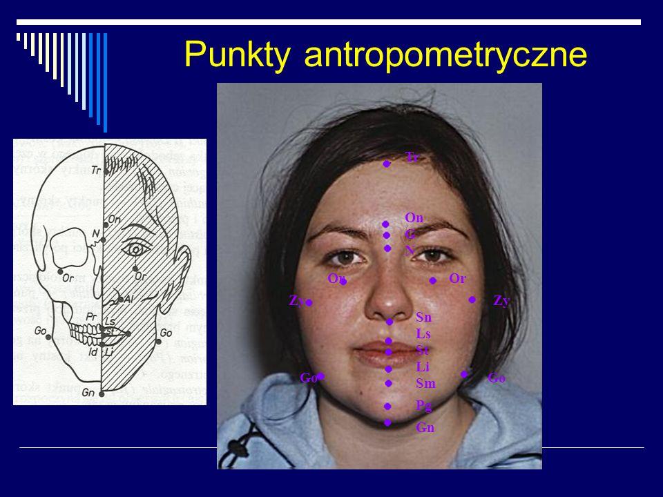 Punkty antropometryczne Tr On G N Or Zy Sn Ls St Li Sm Pg Gn Go
