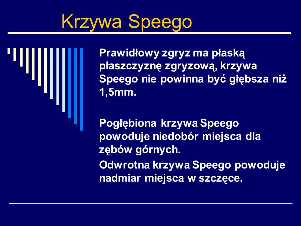 Krzywa Speego Prawidłowy zgryz ma płaską płaszczyznę zgryzową, krzywa Speego nie powinna być głębsza niż 1,5mm. Pogłębiona krzywa Speego powoduje nied