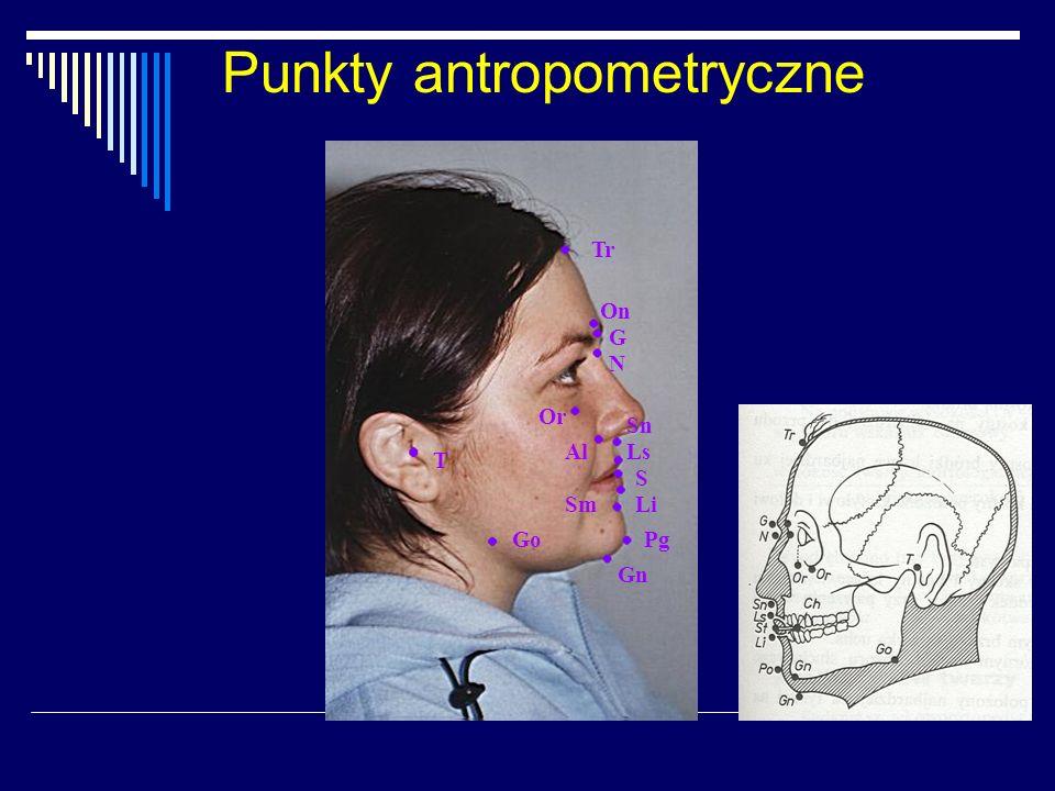 Analiza rysów twarzy A - twarz fizjonomiczna B - twarz morfologiczna wg Izarda Płaszczyzny: czołowa, pośrodkowa, frankfurcka