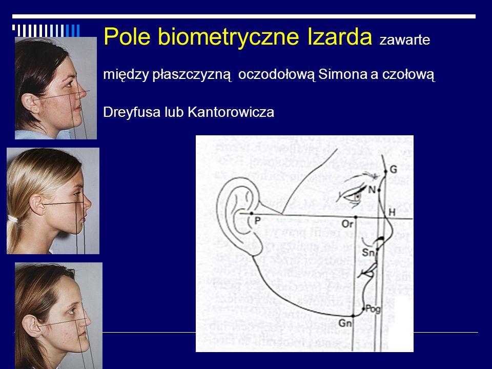 Pole biometryczne Izarda zawarte między płaszczyzną oczodołową Simona a czołową Dreyfusa lub Kantorowicza