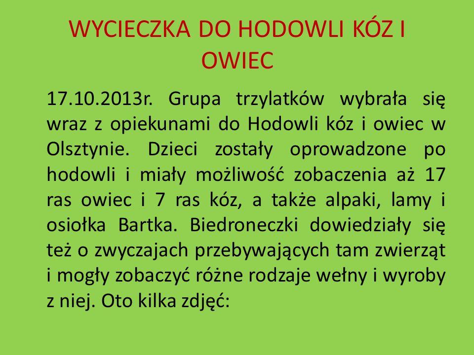 WYCIECZKA DO HODOWLI KÓZ I OWIEC 17.10.2013r. Grupa trzylatków wybrała się wraz z opiekunami do Hodowli kóz i owiec w Olsztynie. Dzieci zostały oprowa