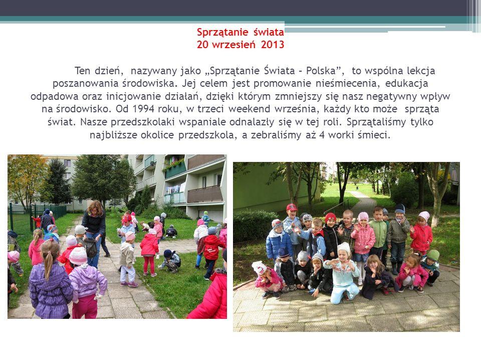 Sprzątanie świata 20 wrzesień 2013 Ten dzień, nazywany jako Sprzątanie Świata – Polska, to wspólna lekcja poszanowania środowiska. Jej celem jest prom