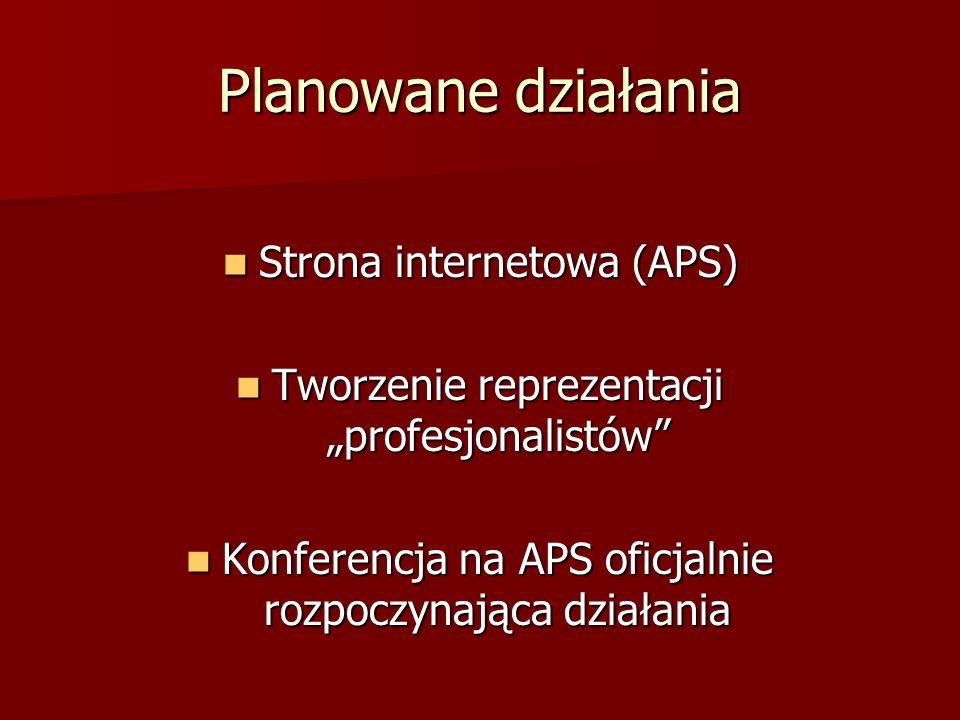 Planowane działania Strona internetowa (APS) Strona internetowa (APS) Tworzenie reprezentacji profesjonalistów Tworzenie reprezentacji profesjonalistó