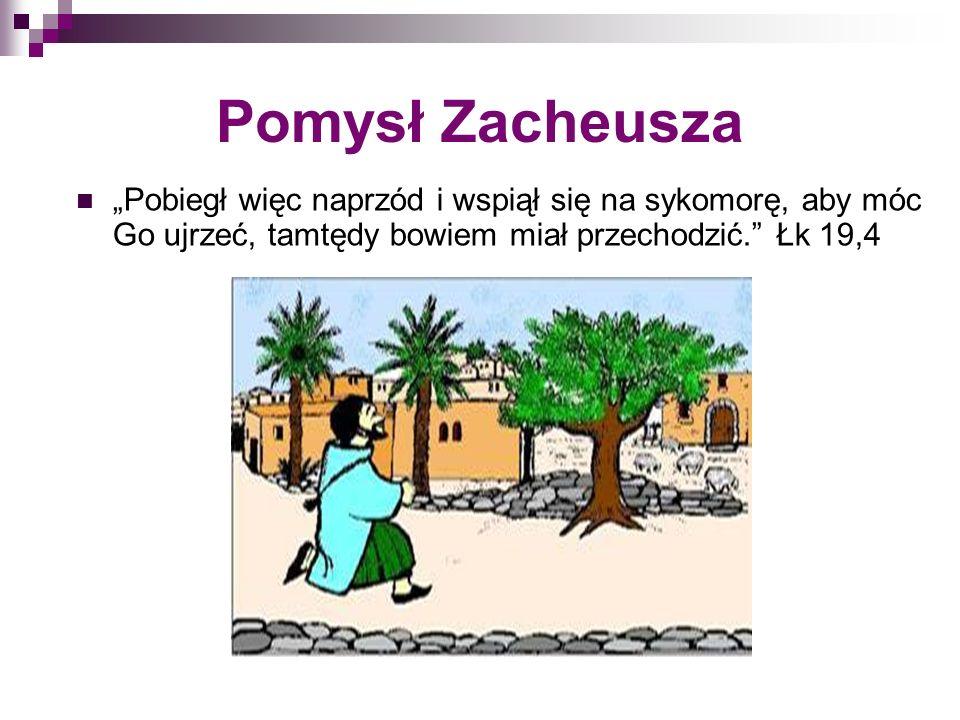 Pomysł Zacheusza Pobiegł więc naprzód i wspiął się na sykomorę, aby móc Go ujrzeć, tamtędy bowiem miał przechodzić. Łk 19,4