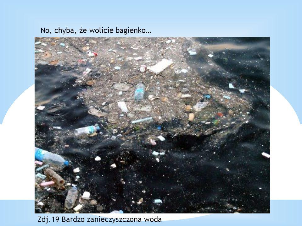 No, chyba, że wolicie bagienko… Zdj.19 Bardzo zanieczyszczona woda