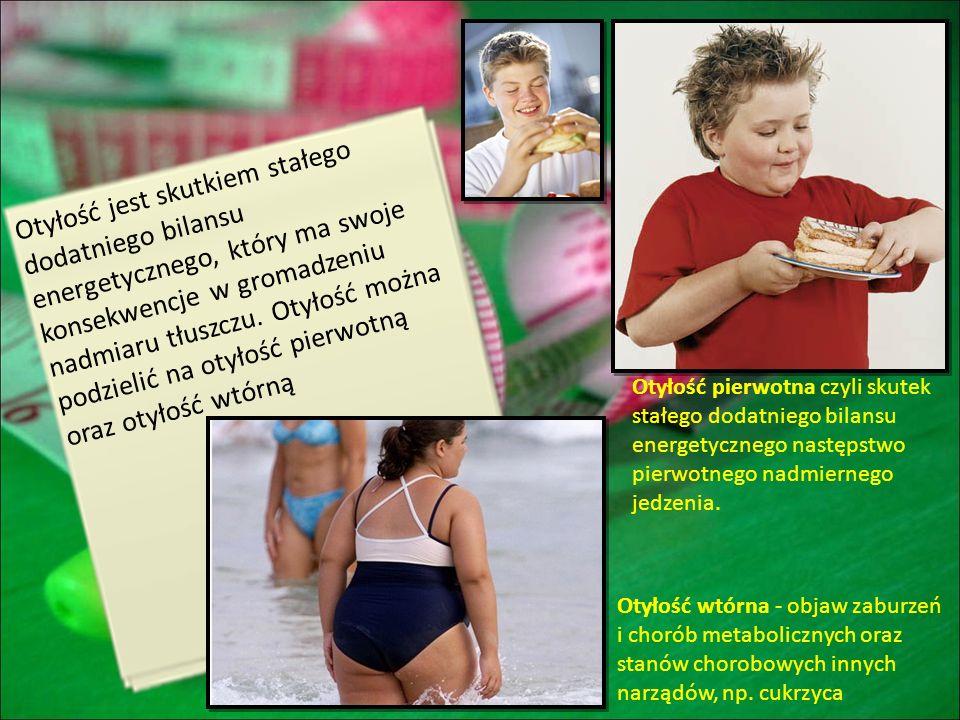 Otyłość jest skutkiem stałego dodatniego bilansu energetycznego, który ma swoje konsekwencje w gromadzeniu nadmiaru tłuszczu. Otyłość można podzielić