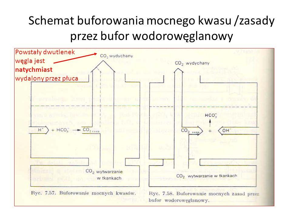 Schemat buforowania mocnego kwasu /zasady przez bufor wodorowęglanowy Powstały dwutlenek węgla jest natychmiast wydalony przez płuca
