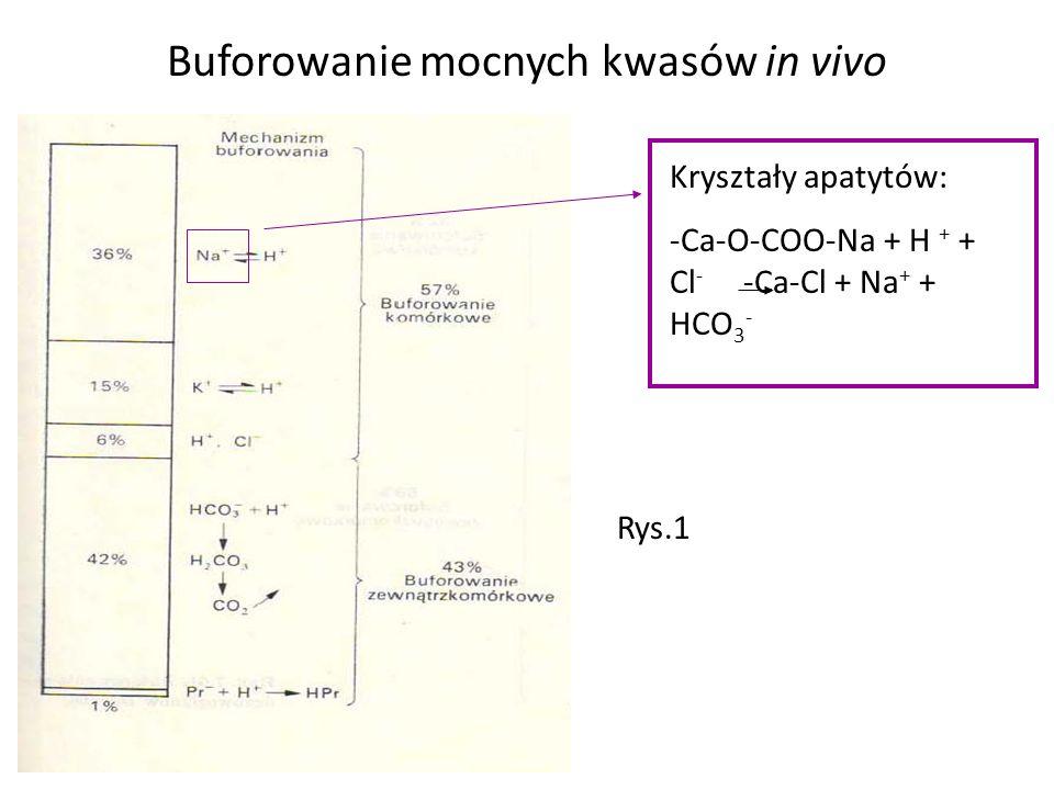 Buforowanie mocnych kwasów in vivo Kryształy apatytów: -Ca-O-COO-Na + H + + Cl - -Ca-Cl + Na + + HCO 3 - Rys.1