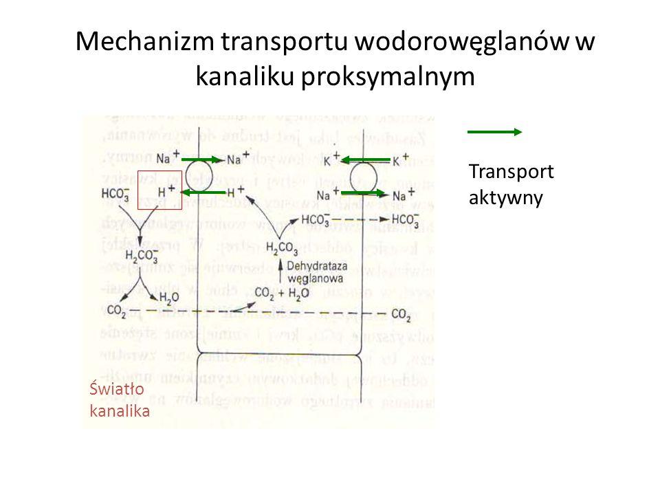 Mechanizm transportu wodorowęglanów w kanaliku proksymalnym Światło kanalika Transport aktywny
