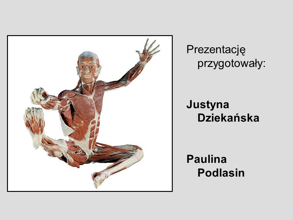 Prezentację przygotowały: Justyna Dziekańska Paulina Podlasin