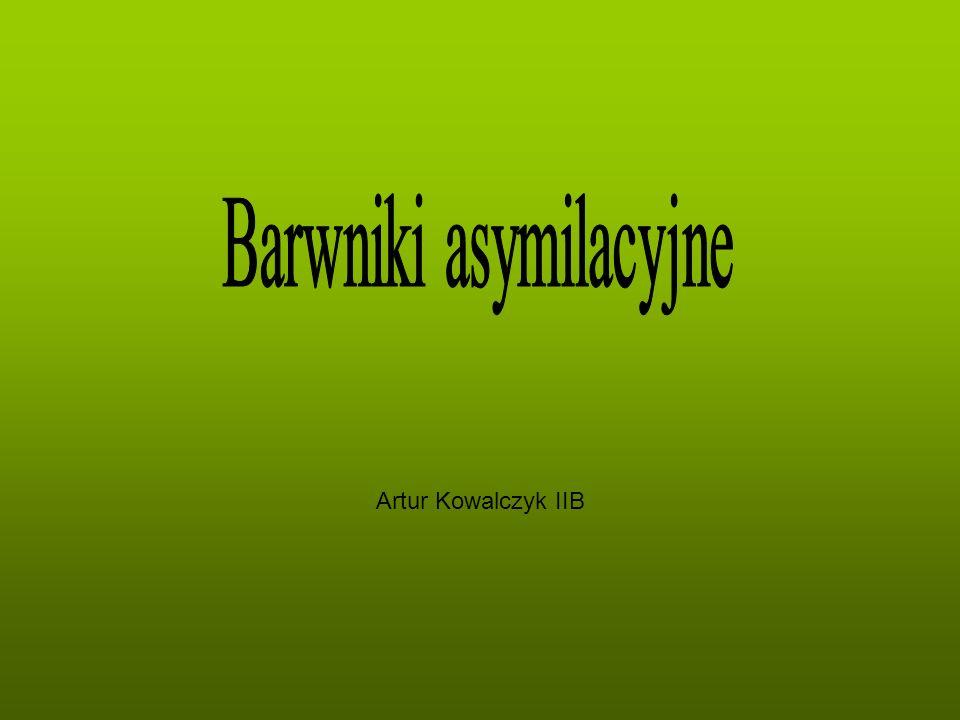 Artur Kowalczyk IIB