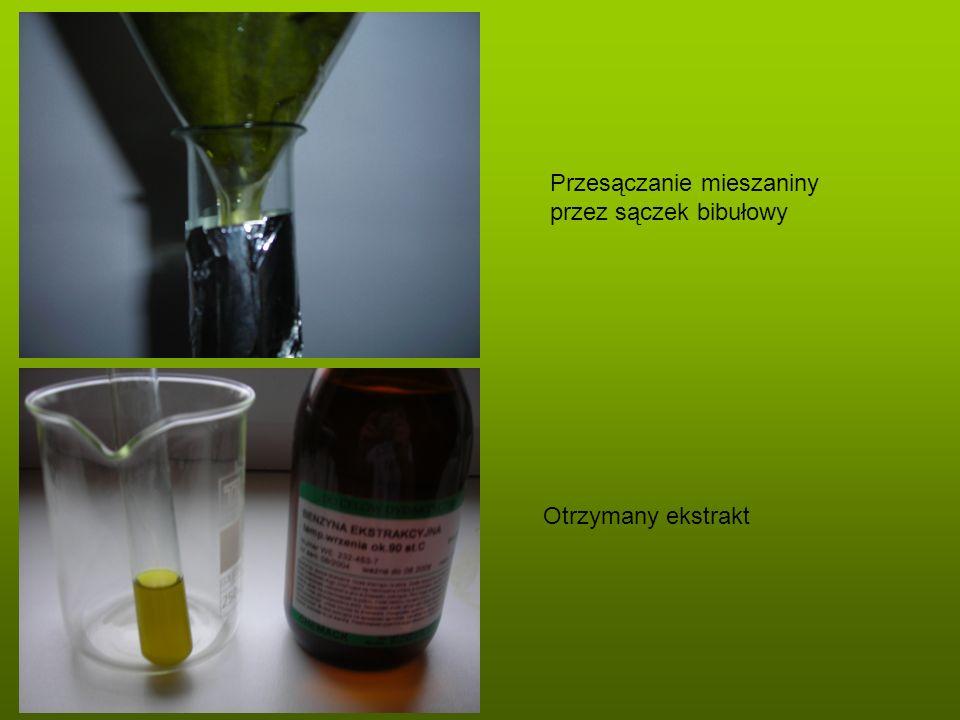 Przesączanie mieszaniny przez sączek bibułowy Otrzymany ekstrakt