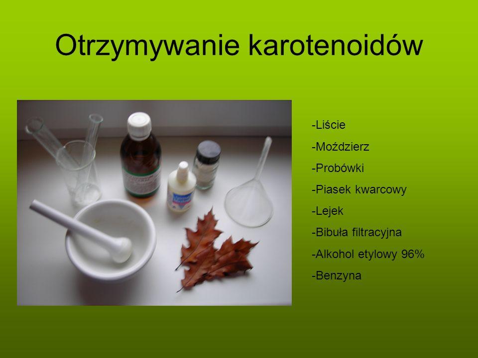 Otrzymywanie karotenoidów -Liście -Moździerz -Probówki -Piasek kwarcowy -Lejek -Bibuła filtracyjna -Alkohol etylowy 96% -Benzyna