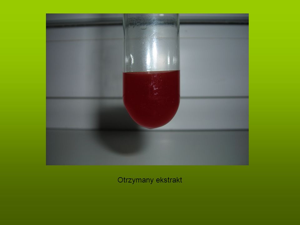 Otrzymany ekstrakt