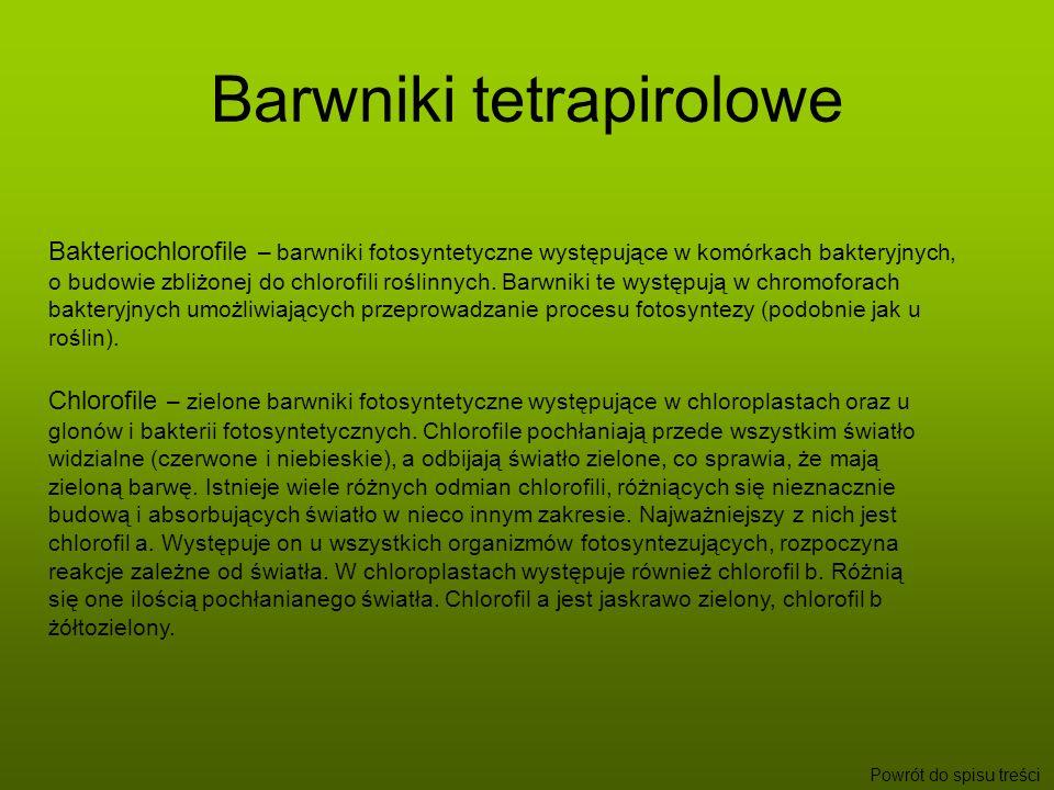 Barwniki tetrapirolowe Powrót do spisu treści Bakteriochlorofile – barwniki fotosyntetyczne występujące w komórkach bakteryjnych, o budowie zbliżonej