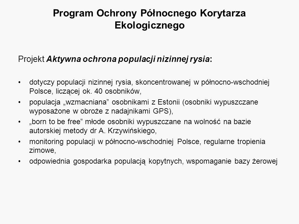 Projekt Aktywna ochrona populacji nizinnej rysia: dotyczy populacji nizinnej rysia, skoncentrowanej w północno-wschodniej Polsce, liczącej ok. 40 osob