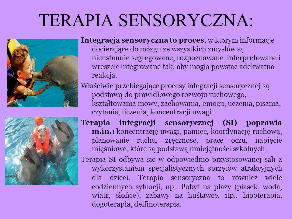 TERAPIA SENSORYCZNA: Integracja sensoryczna to proces, w kt ó rym informacje docierające do m ó zgu ze wszystkich zmysł ó w są nieustannie segregowane