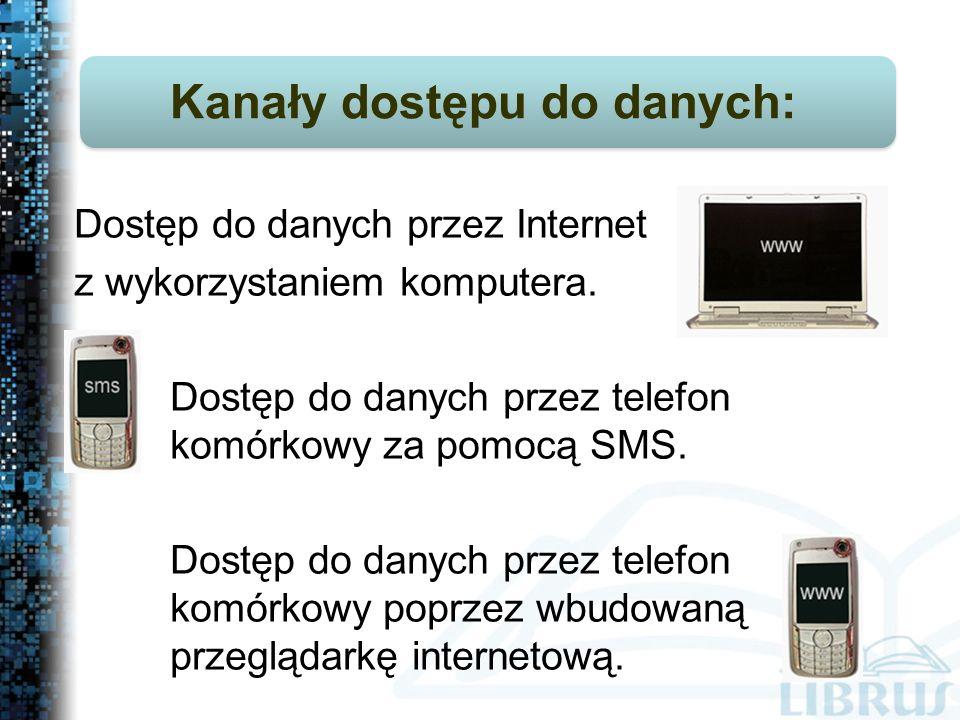 Dostęp do danych przez Internet z wykorzystaniem komputera.