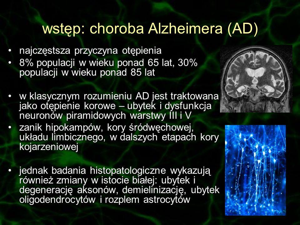 wstęp: choroba Alzheimera (AD) najczęstsza przyczyna otępienianajczęstsza przyczyna otępienia 8% populacji w wieku ponad 65 lat, 30% populacji w wieku