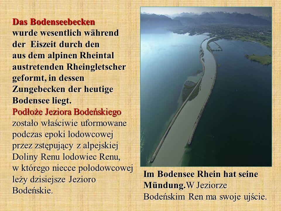 Das Bodenseebecken wurde wesentlich während der Eiszeit durch den aus dem alpinen Rheintal austretenden Rheingletscher geformt, in dessen Zungebecken