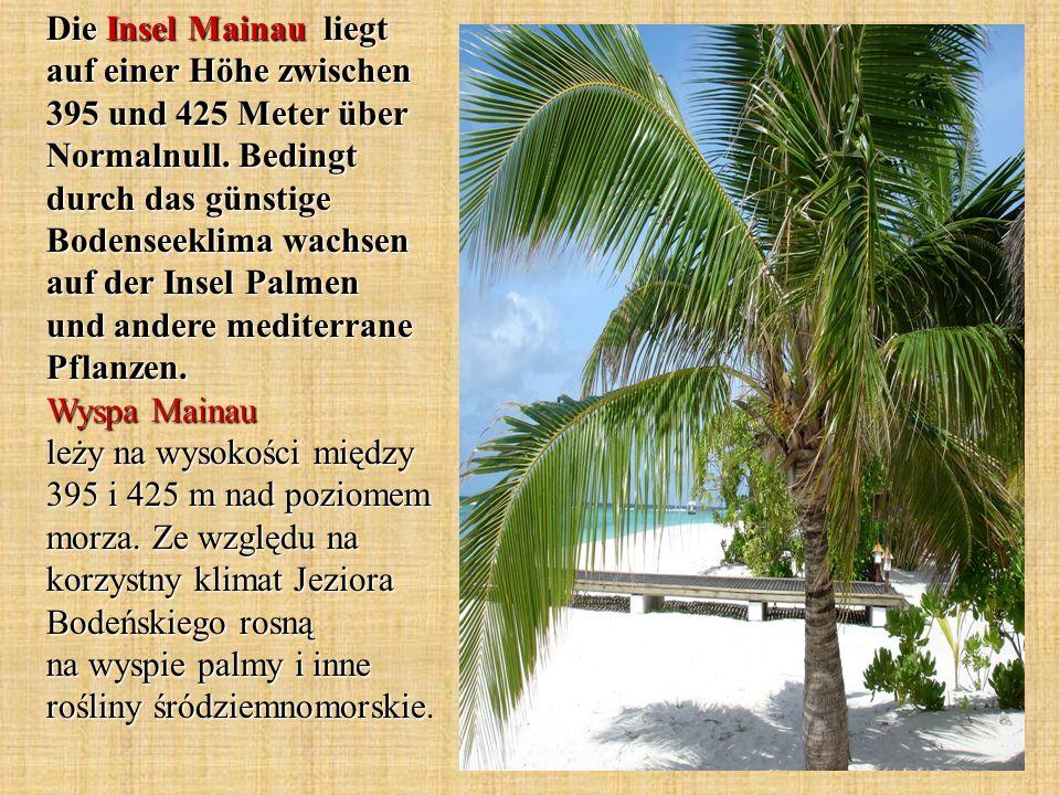 Die Insel Mainau liegt auf einer Höhe zwischen 395 und 425 Meter über Normalnull. Bedingt durch das günstige Bodenseeklima wachsen auf der Insel Palme