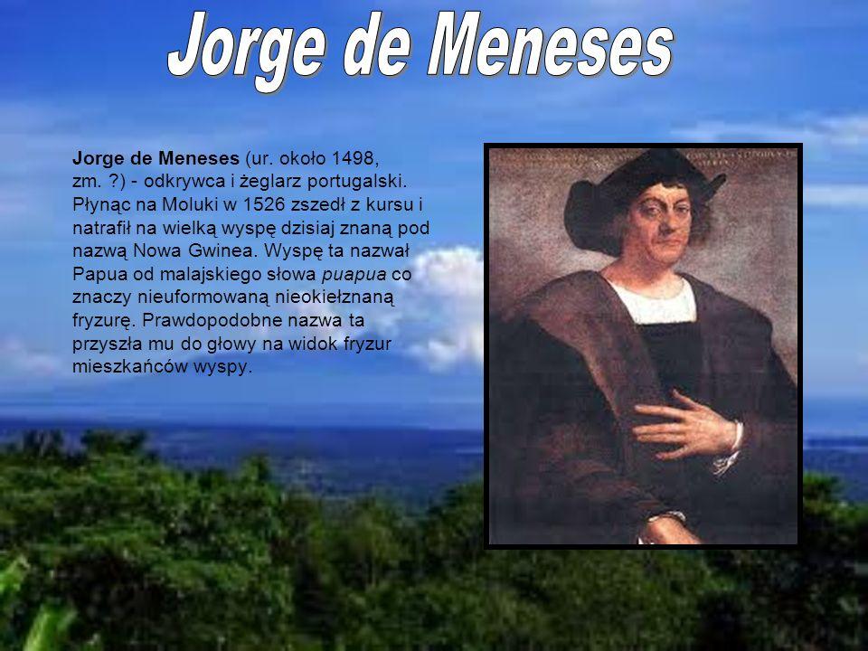 Jorge de Meneses (ur. około 1498, zm. ?) - odkrywca i żeglarz portugalski. Płynąc na Moluki w 1526 zszedł z kursu i natrafił na wielką wyspę dzisiaj z
